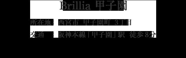 兵庫県西宮市甲子園町・「甲子園」駅 徒歩8分