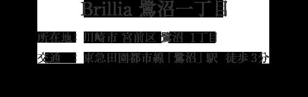 神奈川県川崎市宮前区鷺沼1丁目・「鷺沼」駅 徒歩3分