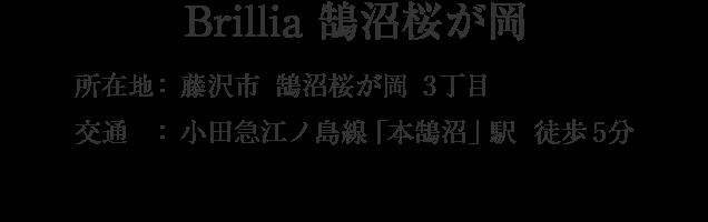神奈川県藤沢市鵠沼桜が岡3丁目・「本鵠沼」駅 徒歩5分