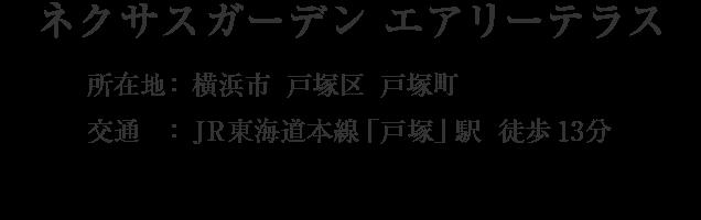 神奈川県横浜市戸塚区戸塚町・「戸塚」駅 徒歩13分