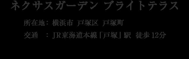 神奈川県横浜市戸塚区戸塚町・「戸塚」駅 徒歩12分