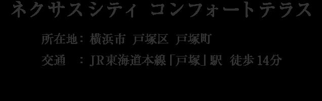 神奈川県横浜市戸塚区戸塚町・「戸塚」駅 徒歩14分