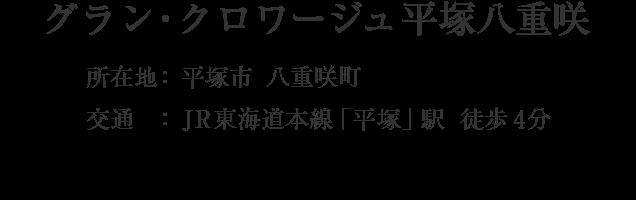 神奈川県平塚市八重咲町・「平塚」駅 徒歩4分