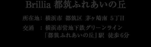 神奈川県横浜市都筑区茅ケ崎南5丁目・「都筑ふれあいの丘」駅 徒歩6分