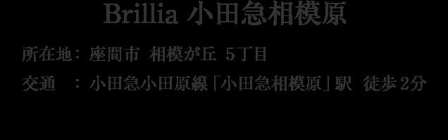 神奈川県座間市相模が丘5丁目・「小田急相模原」駅 徒歩2分